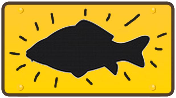 Le requin déguisé en dauphin - La carpe pseudo-éclairée