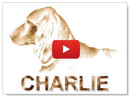 Charlie - Une chanson écrite par Robert Buissière et composée par Bernard Lamailloux